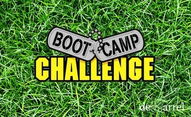 Bootcamp Game € 23,99 per persoon